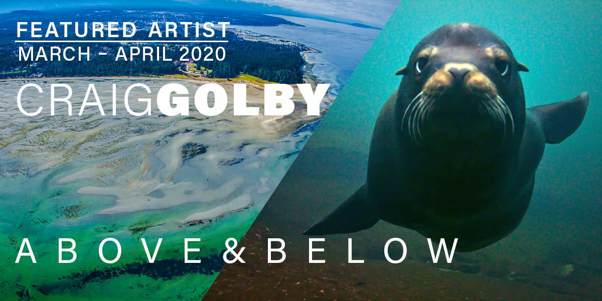Craig Golby, Above & Below, Featured Artist for March & April, 2020
